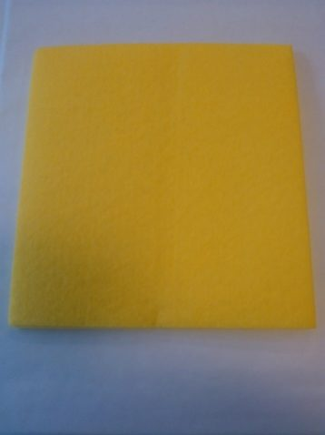 Absorbent Cloth 1